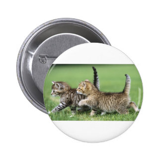 Kittens on the Prowl 6 Cm Round Badge