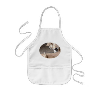 Kittens Playing on a Kid's Apron