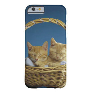 Kittens sleeping in basket barely there iPhone 6 case