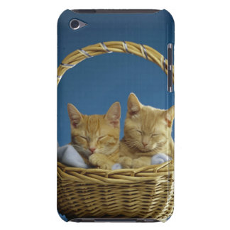 Kittens sleeping in basket barely there iPod case