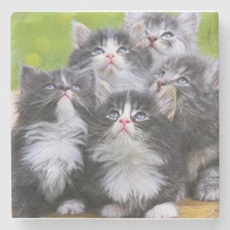 Kittens Stone Coaster