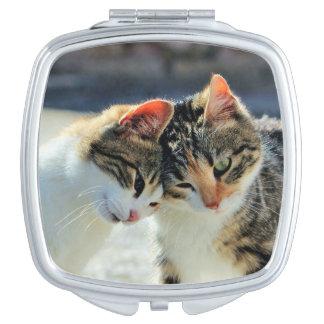 Kittens Vanity Mirror