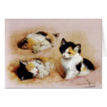 KITTENS Waking up Greeting Card