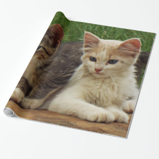 Kittens Wrapping Paper