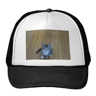 Kittie Waiting Cap