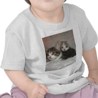 Kitties Chilaxin Tees