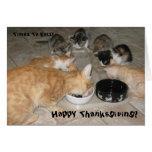 Kitties Thanksgiving ! Greeting Card