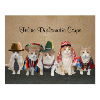 Kitty Ambassadors Postcard