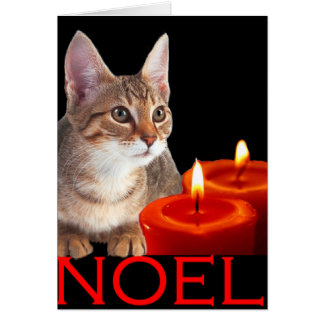 Kitty and candles greeting card