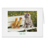 kitty and ducks Chick Chat Greeting Card