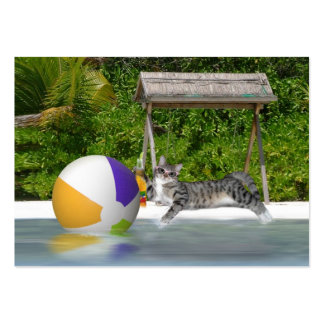 Kitty at the Lake Side Large Business Cards (Pack Of 100)