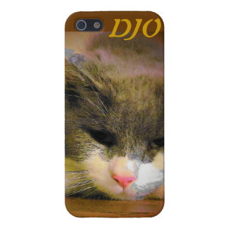 Kitty b sad case for the iPhone 5