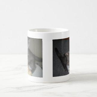 Kitty Basic White Mug