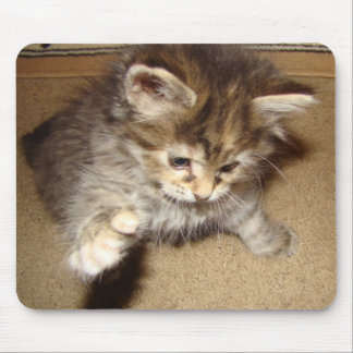 Kitty batting at the mouse mouse pad