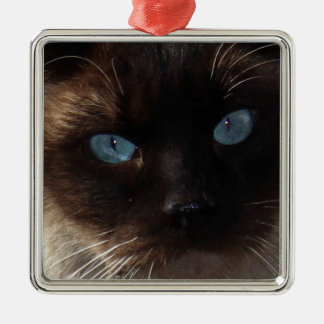 Kitty Blue Eyes Christmas Ornament