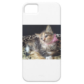 Kitty Case Barely There iPhone 5 Case