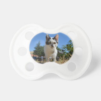 Kitty Cat Adventure BooginHead Pacifier