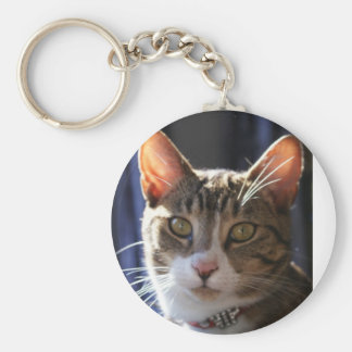 Kitty Cat Basic Round Button Key Ring