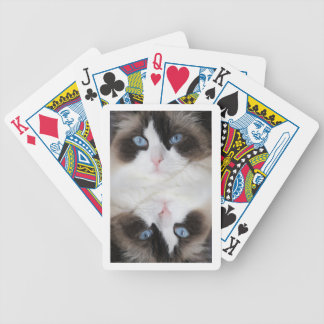 Kitty Cat Blue Eyed Darling Bicycle Playing Cards