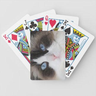 Kitty Cat Blue Eyed Darling Poker Deck