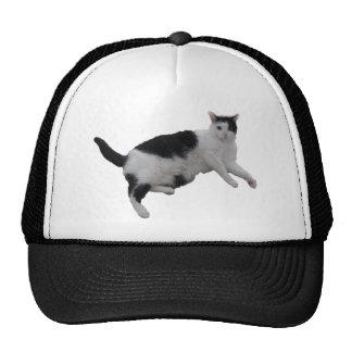 KITTY CAT MESH HATS