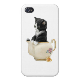 Kitty Cat Kitten iPhone Case