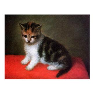 Kitty Cat Postcard:  Kitten by George Stubbs Postcard