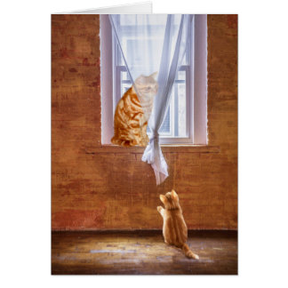 Kitty cat role  model greeting card