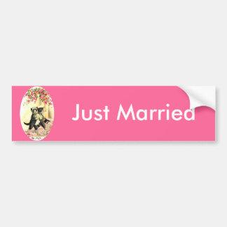 Kitty Cat Wedding Bumper Stickers
