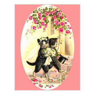 Kitty Cat Wedding Postcard