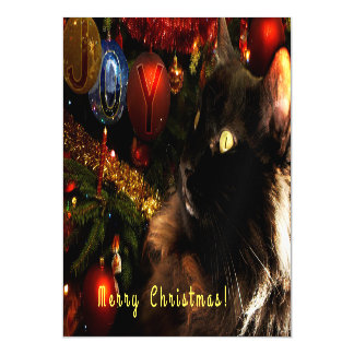 Kitty Christmas Greetings Magnetic Invitations