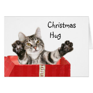 Kitty Christmas hug Greeting Card
