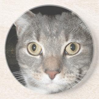 Kitty coaster