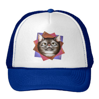 Kitty Expressions Hat