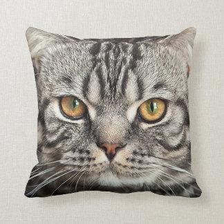 Kitty Face Closeup Pillow