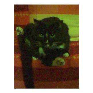 kitty flyer design