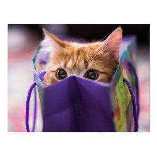 Kitty Gift Bag Postcard