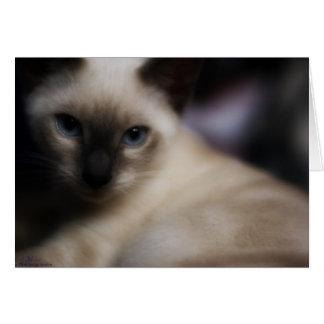 Kitty Glamour Card