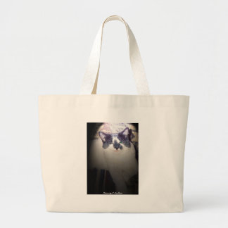 Kitty goes to the beach bags