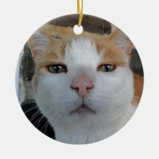 Kitty Head Shot Ornament