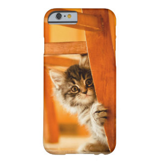 Kitty Holding Chair Leg Barely There iPhone 6 Case