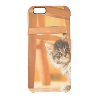 Kitty Holding Chair Leg Clear iPhone 6/6S Case