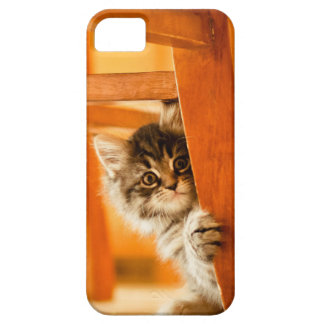 Kitty Holding Chair Leg iPhone 5 Cases