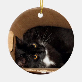 Kitty in a Box - Photograph Christmas Ornament