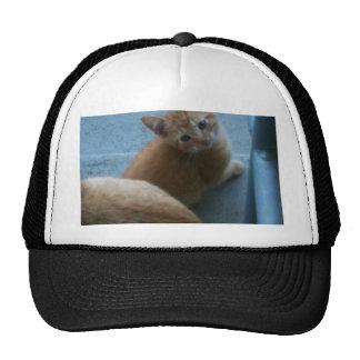 Kitty Kat iPhone 4 Case Cap