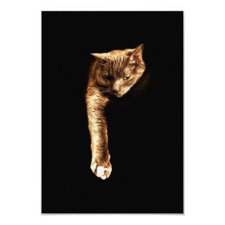 Kitty Kitty 9 Cm X 13 Cm Invitation Card