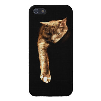Kitty Kitty iPhone 5 Cover
