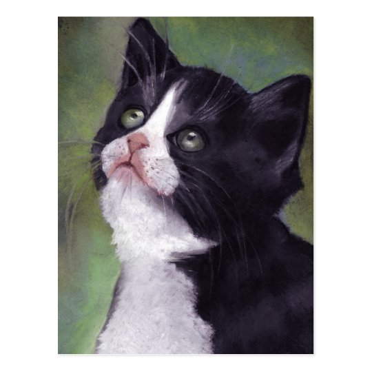 Kitty Looking Up: Cat in Oil Pastel Postcard