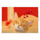 Kitty love even in dreams card