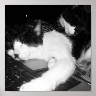 Kitty Lovings Poster